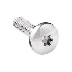 PETERBILT SCREWS, BUTTON HEAD FOR DASH PANEL-CHROME 22PK